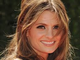 Karin played by Stana Katic